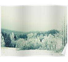 Nordic Nature Poster