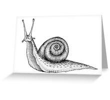 Snail Greeting Card