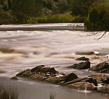 Yarra Rapids by Brad Tierney