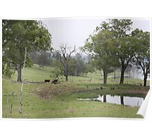 Foggy Morning in the Country Poster