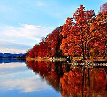 Lake at Fall by Daidalos