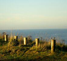 By Workington Sea    by BevsDigitalArt