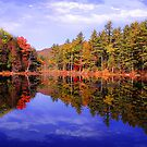 Red Eagle Pond by copper4000