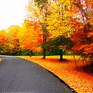 Autumn Road III by copper4000