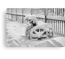 Cold Disposition Canvas Print