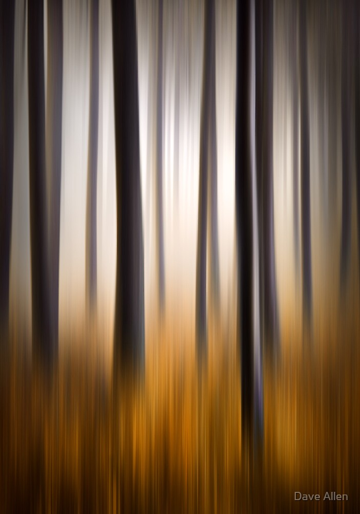 Forest Essence - Autumn Landscape Vertical Panning by Dave Allen