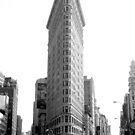 Flatiron in New York by dgscotland