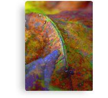 Rainbow Leaf (9305) Canvas Print