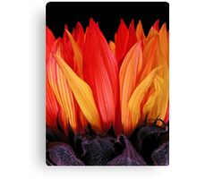 Flames Canvas Print