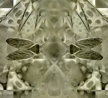 Cicada by Diane Johnson-Mosley