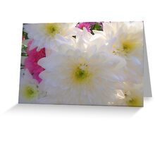 Soft White Greeting Card