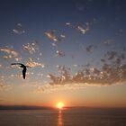 Sunset in the paradise - Puesta del sol en el paraiso by Bernhard Matejka