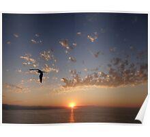 Sunset in the paradise - Puesta del sol en el paraiso Poster