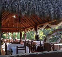 Palapa - traditional restaurant down by the river - tradiconal restaurante cerca del rio by Bernhard Matejka