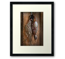 brace of pheasant Framed Print