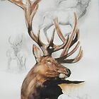 Elk by BarbBarcikKeith