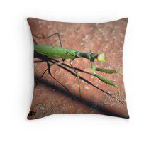 Praying mantis, praying ant. Throw Pillow