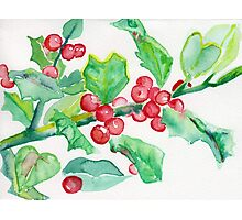 Holly Christmas card  Photographic Print