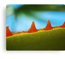 monster plant Canvas Print