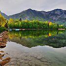 tranquil morning by Daidalos