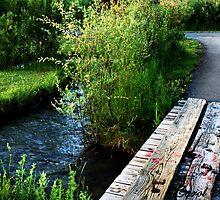 Bridge to Nowhere by Carol Rudd