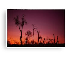 Afternoon Summer Glow Canvas Print