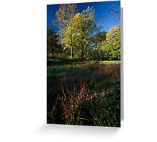 The Grass Turns Red Greeting Card