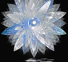 Ice Crystal by Pam Amos