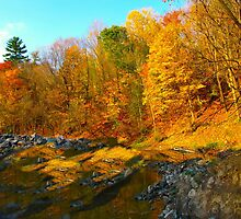 Undulating Autumn by MarianBendeth