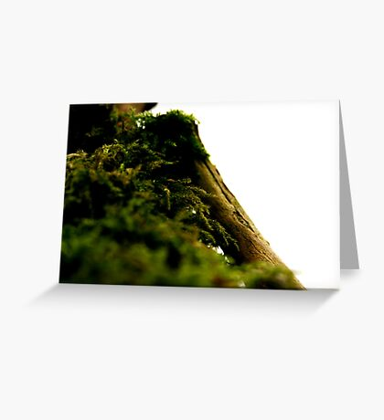 Forgotten Life, Always There Greeting Card