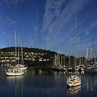 Bellerive Yacht Club Panorama by Noel Elliot