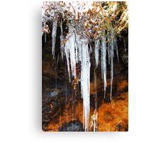 Mt Wellington, Tasmania - icicles Canvas Print