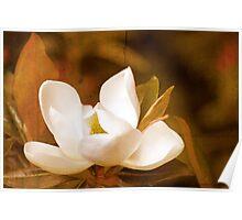 Grandiflora Poster