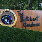 Butchart Gardens - 2011 by MischaC