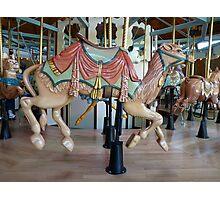 Carousel Camel - Butchart Photographic Print