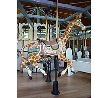 Carousel Giraffe - Butchart Photographic Print