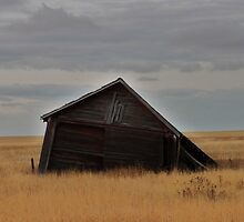 Collapsed building near Vulcan AB by ntsotame
