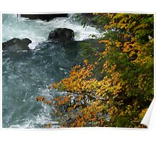 Autumn Leaves by River - Butchart Poster