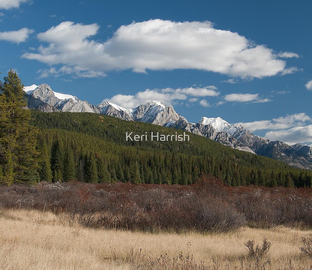 Moose Meadows Two by Keri Harrish