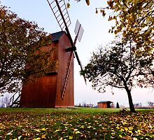 Stary Poddvorov - Windmill by Leon Ritchie