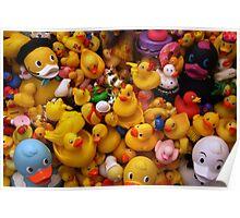 Flock Of Ducks: 01 Poster