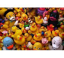Flock Of Ducks: 01 Photographic Print
