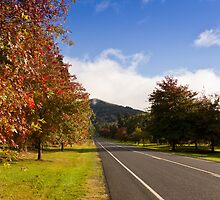 Mt Macedon Autumn by Russell Charters