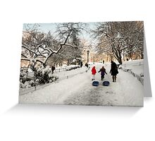 Sledding Central Park Greeting Card
