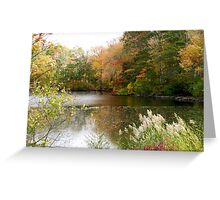 Pond with fall colors Greeting Card