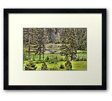 Val Caroll Framed Print