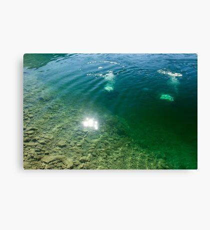 Divers Canvas Print
