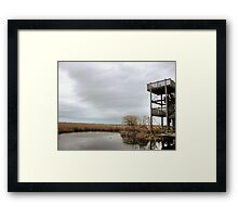 Winter Marshy Lookout Framed Print