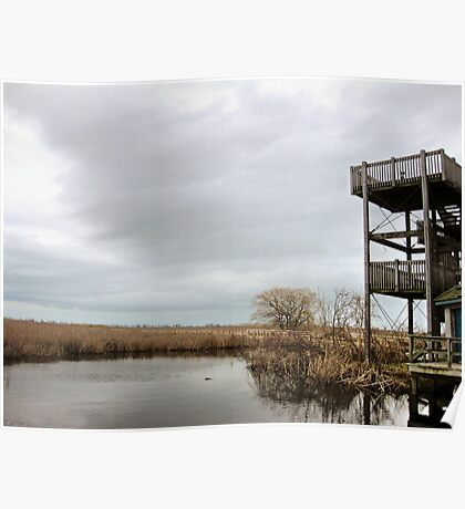 Winter Marshy Lookout Poster