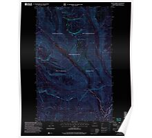 USGS Topo Map Washington State WA Mount Barney 242475 2002 24000 Inverted Poster